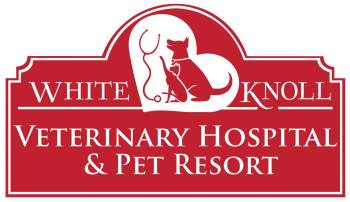 White Knoll Veterinary Hospital and Pet Resort